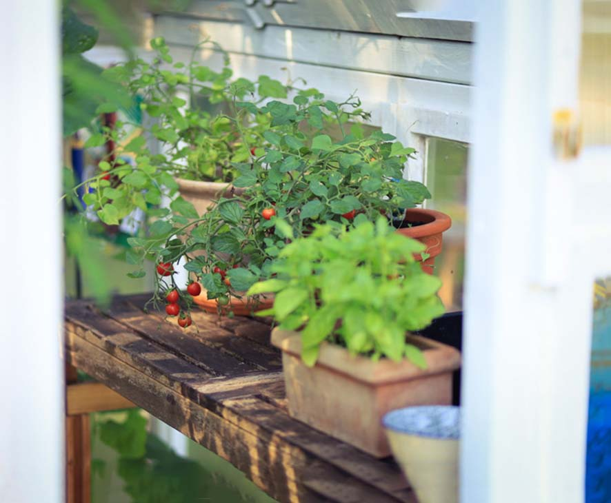 Gartenliebe